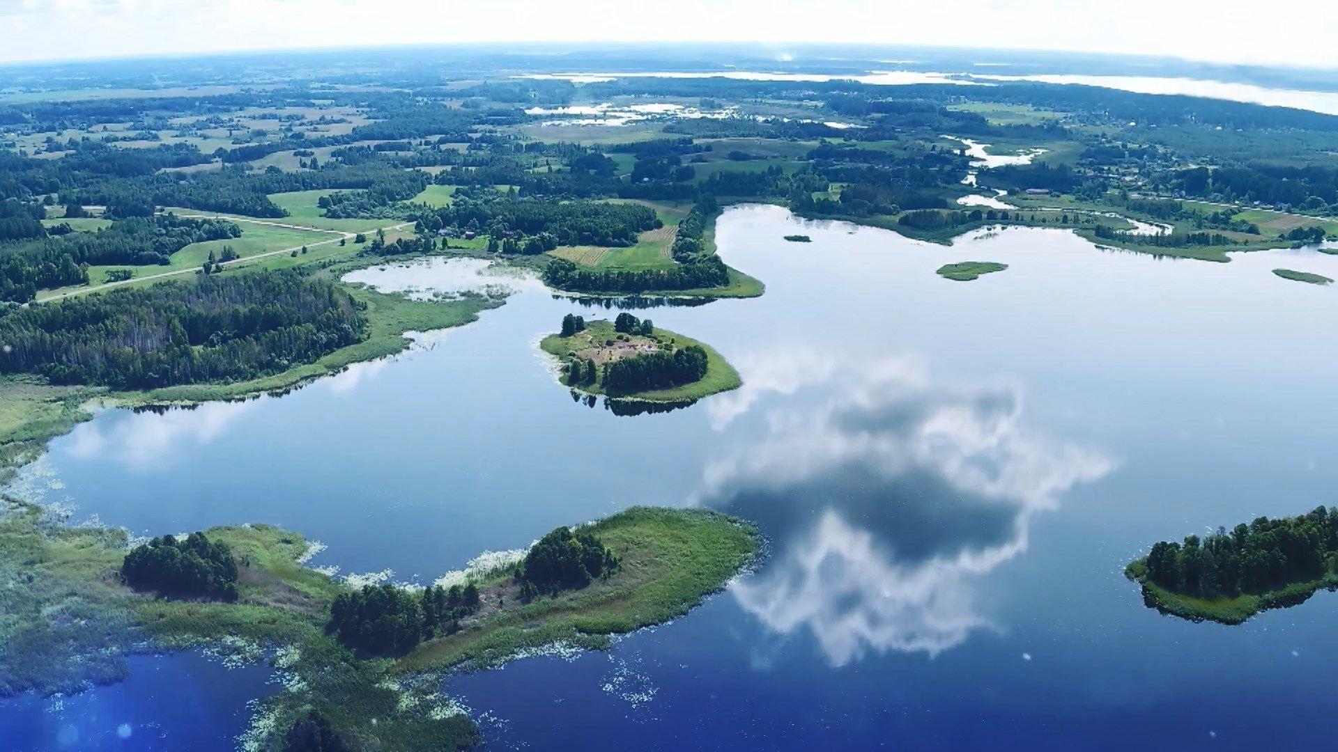 картинки браславских озер кроликов этой породы