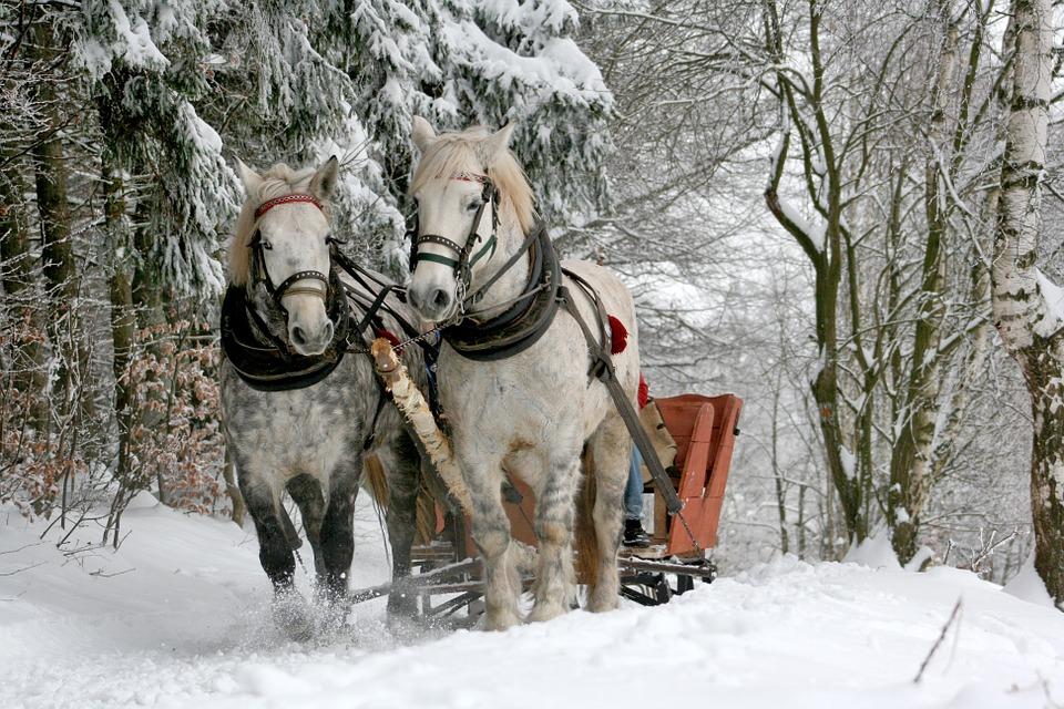 Куда поехать в Белоруссии зимой
